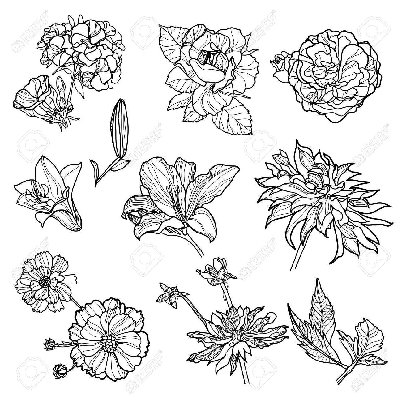 1300x1300 Gallery Flowers Design Sketch,