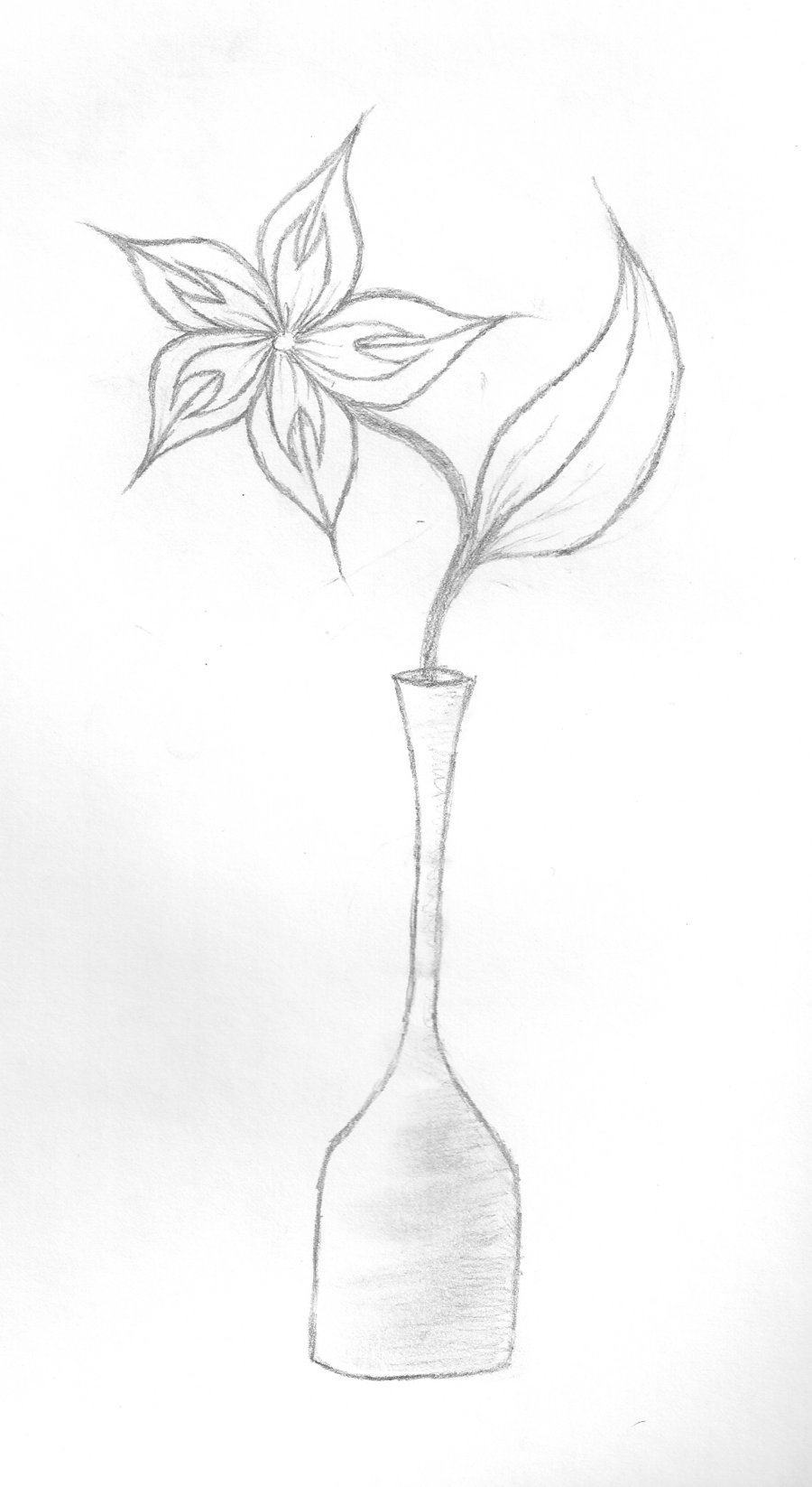 900x1646 Flower In A Vase Drawing Sketch