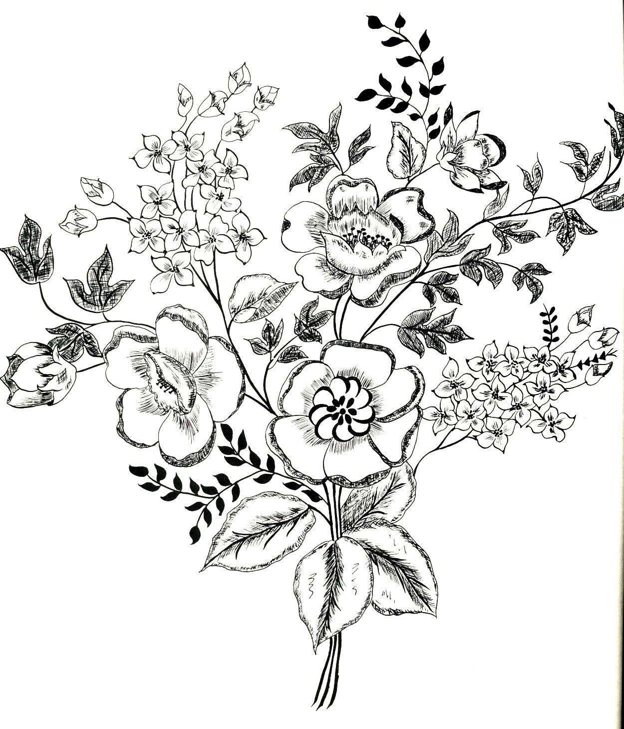 1250x1460 Flower Line Drawings. Flower Type Of Line Drawing Vector Diagram