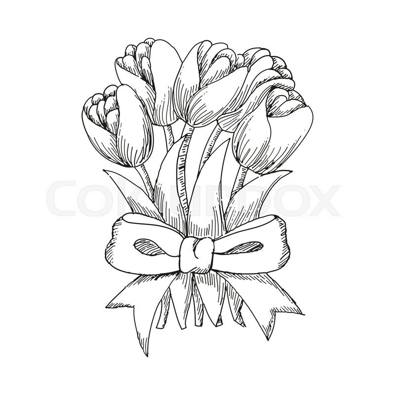 800x800 Hand Drawn Bouquet Of Tulips Tied Up By A Ribbon, Cute Doodling