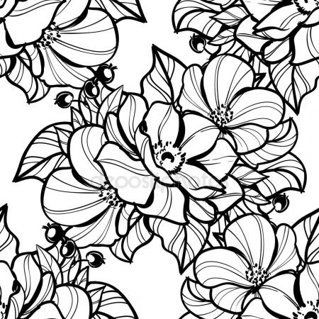 450x450 Peony Flower Drawing Sketch Black White Line Art Stock Vector