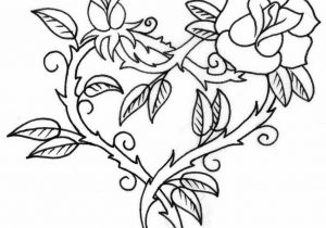 300x210 Flower Outline Drawing