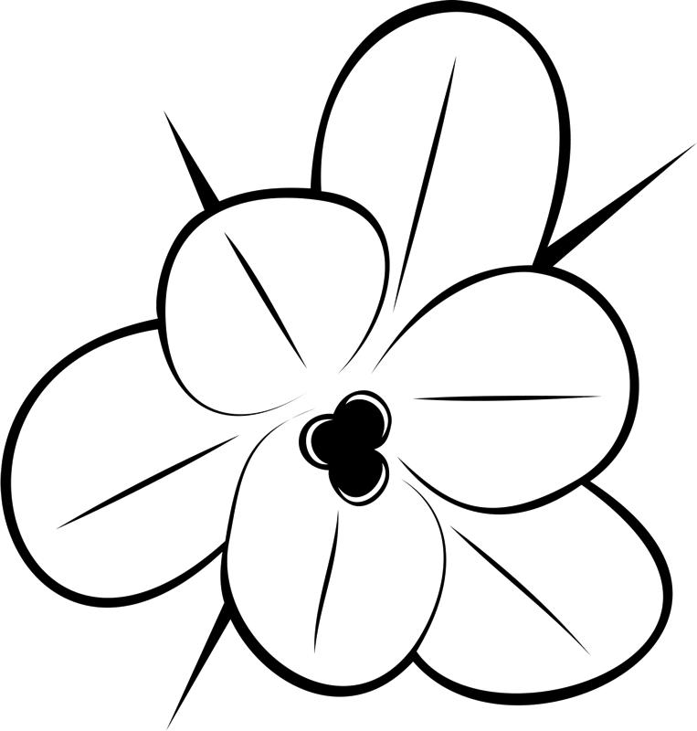763x800 Flower Outline Drawing Rubber Stamp Flower Amp Leaf Stamps