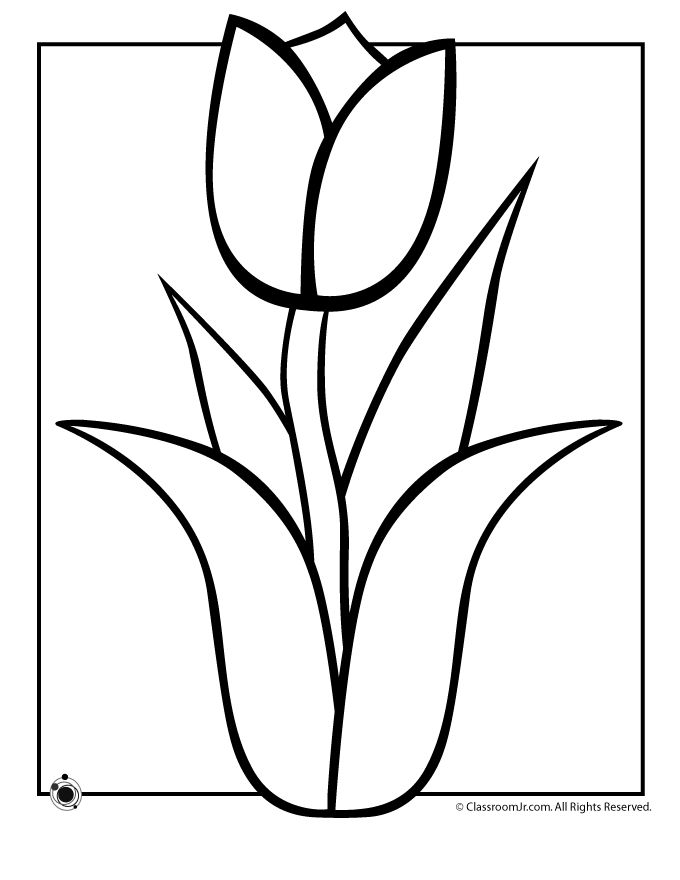680x880 Flower Outline For Colouring 24377