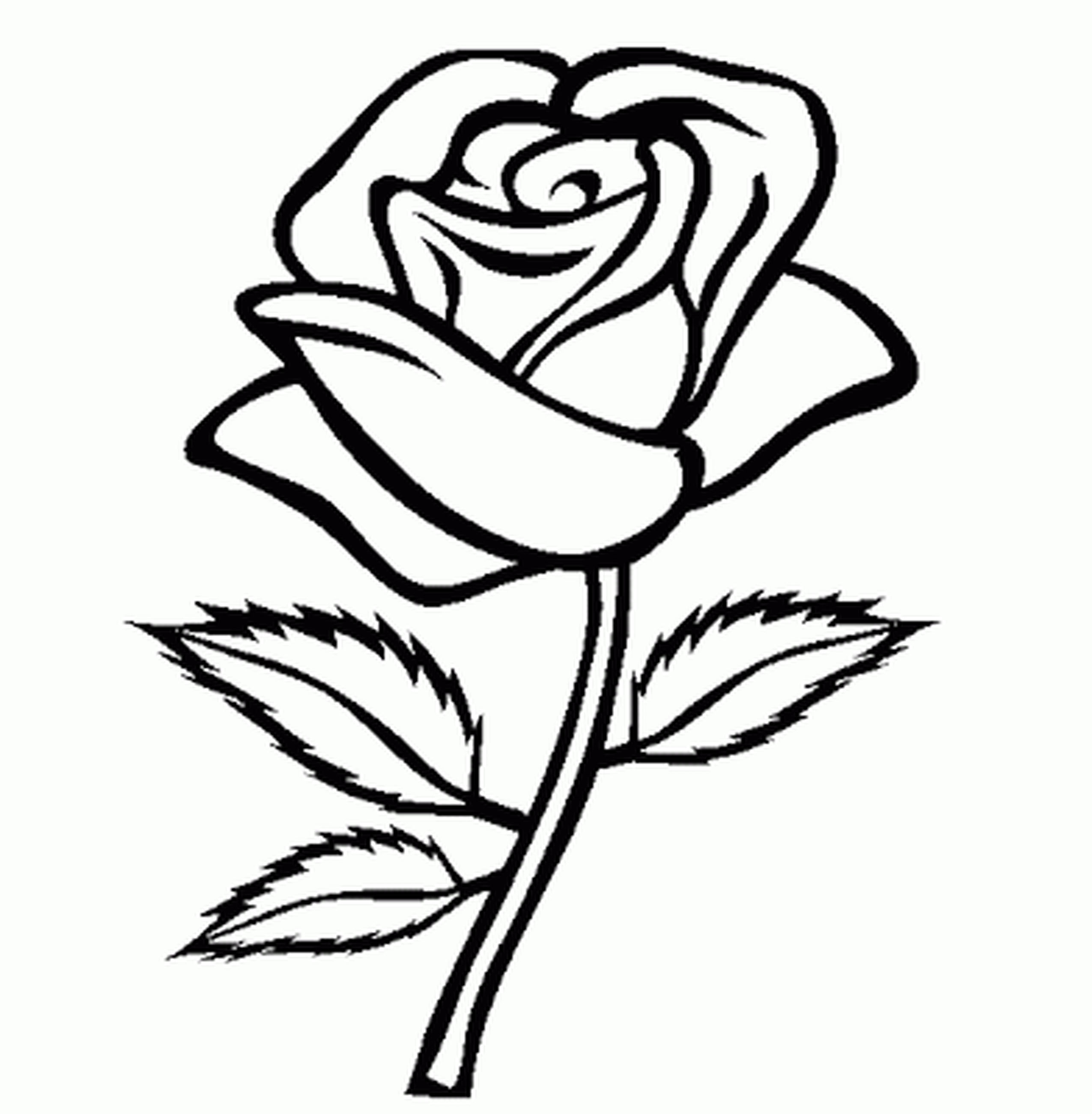 Flowers Outline Drawing at GetDrawings.com | Free for personal use ...