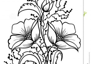 300x210 Flowers Outline Drawings