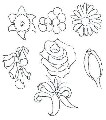 345x388 How To Draw Flowers