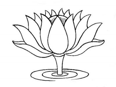 400x300 Lotus Flower Outline Drawing Lotus Clipart Flower Outline Pencil