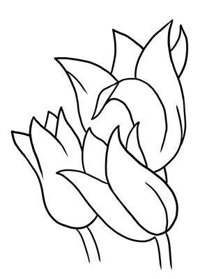 320x400 New Flower Outline Clip Art Flower Outline Drawing Clipart Best