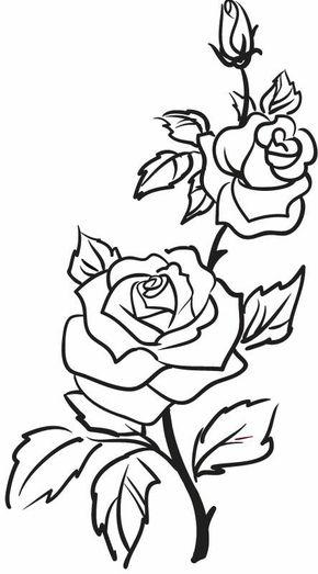 290x523 Roses, Flowers, Vine, Leaves, Bud, Open, Clip Art, Black And White