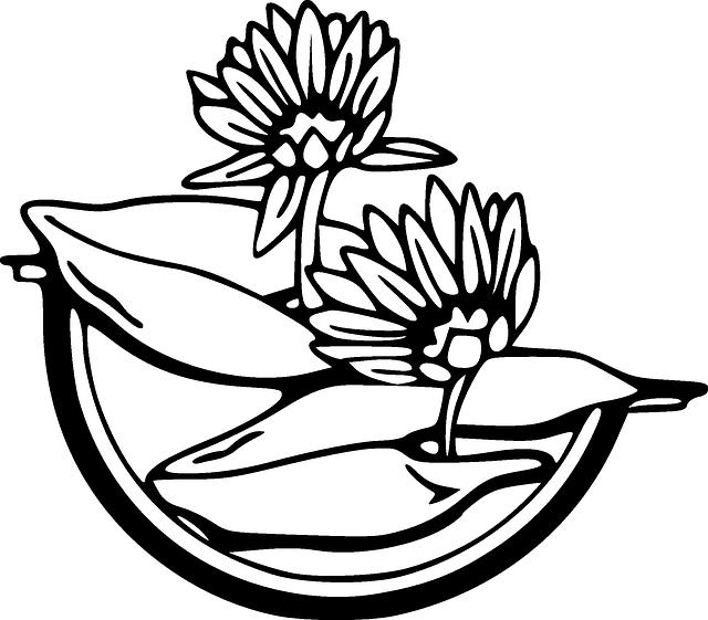 640x561 Water, Outline, Drawing, Flower, Flowers, Cartoon
