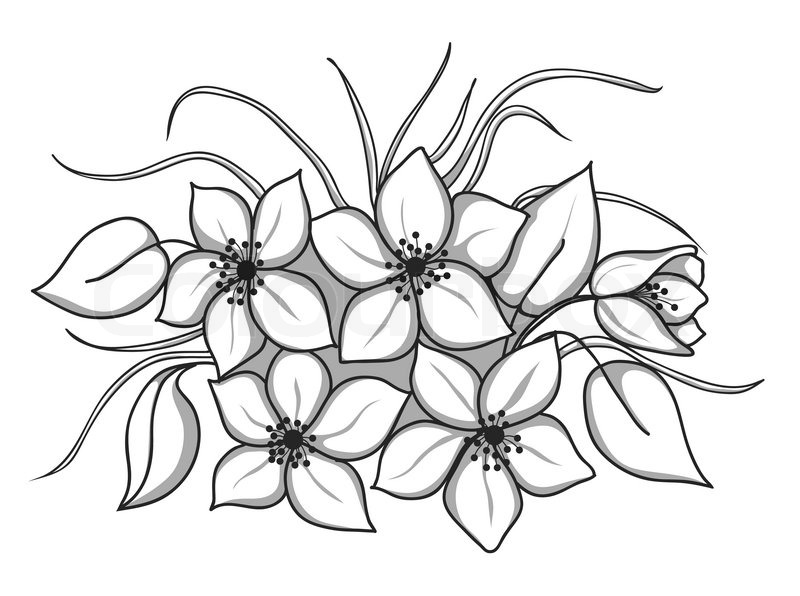 800x596 Bunch Of Flowers Outline