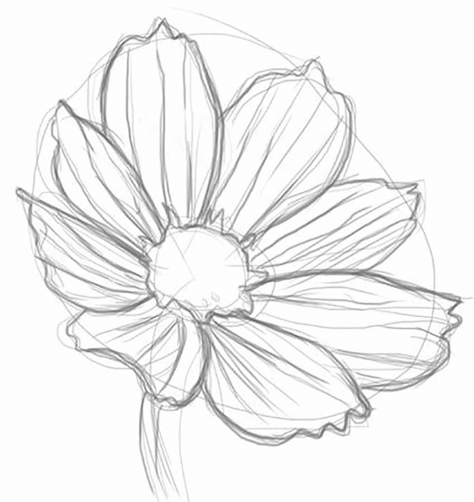 967x1024 Flower Pencil Sketch A Drawing Of A Flower Step Step Pencil