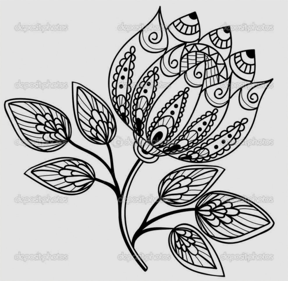 990x965 New Pics Of Drawing Flowers Pictures Pictures Of Flower Drawings