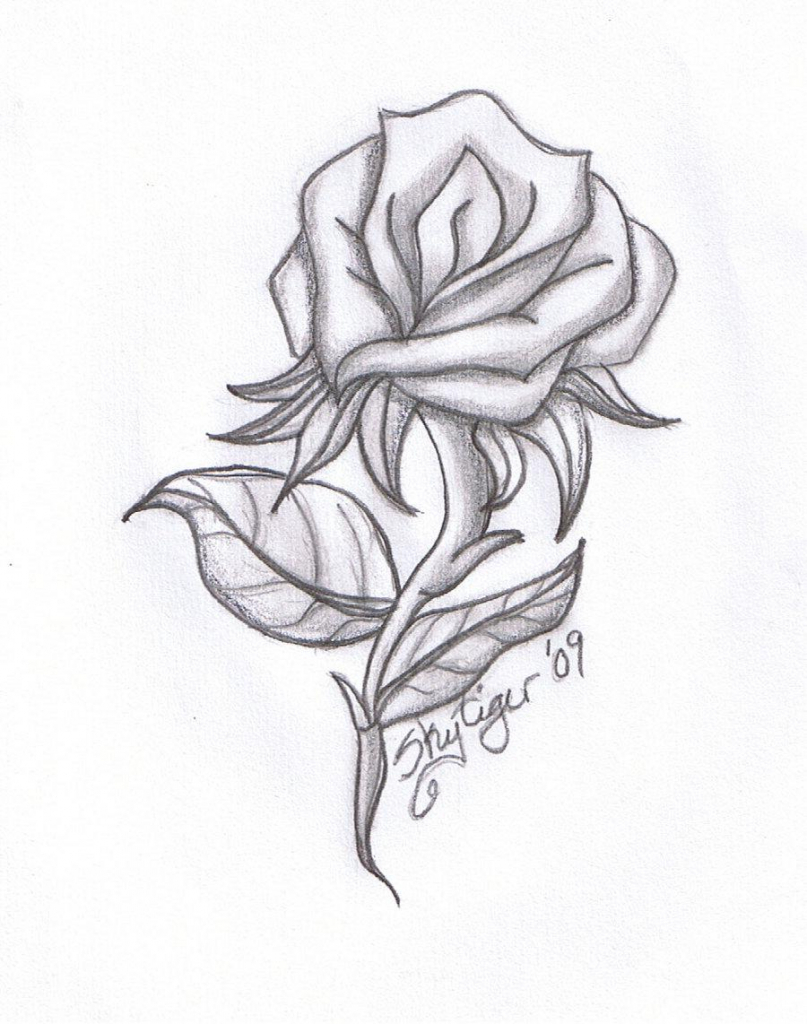 807x1024 Awesome Drawings Of Flower Free Download Tumblr Flowers Drawing