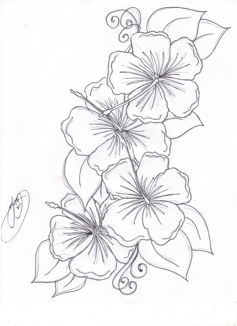 3d printable flower patterns instructions printable free printable flowers with markers drawing at getdrawings free for personal 762x1049 flowers drawings printable izmirmasajfo
