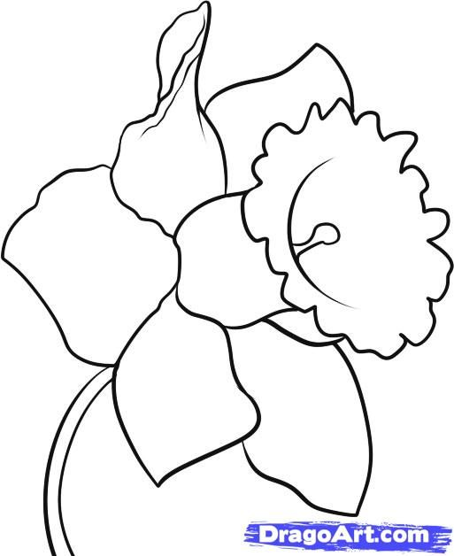 513x628 This Site Has Instructions For How To Draw All Kinds Of Things