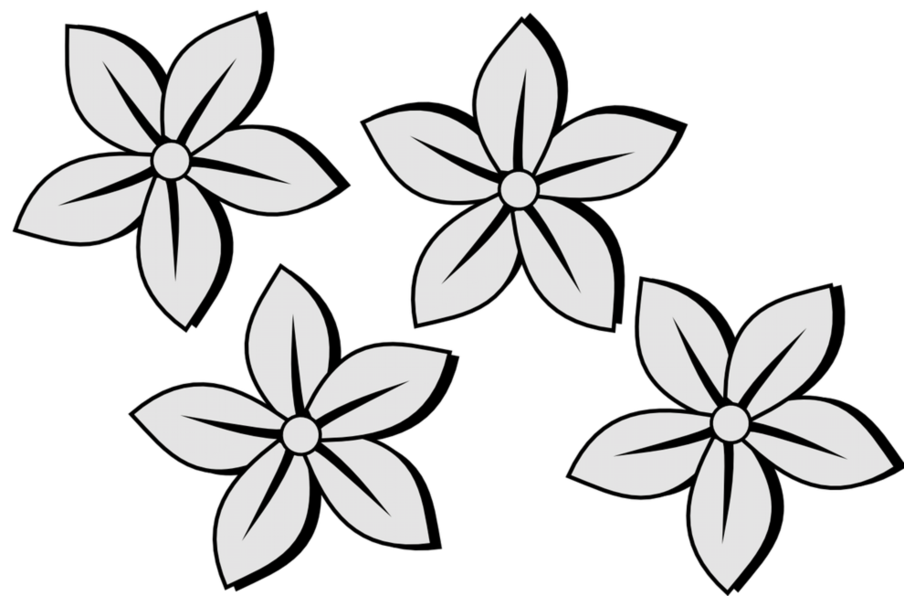 990x652wesome Image Of Flower To Draw How To Draw Flower Draw