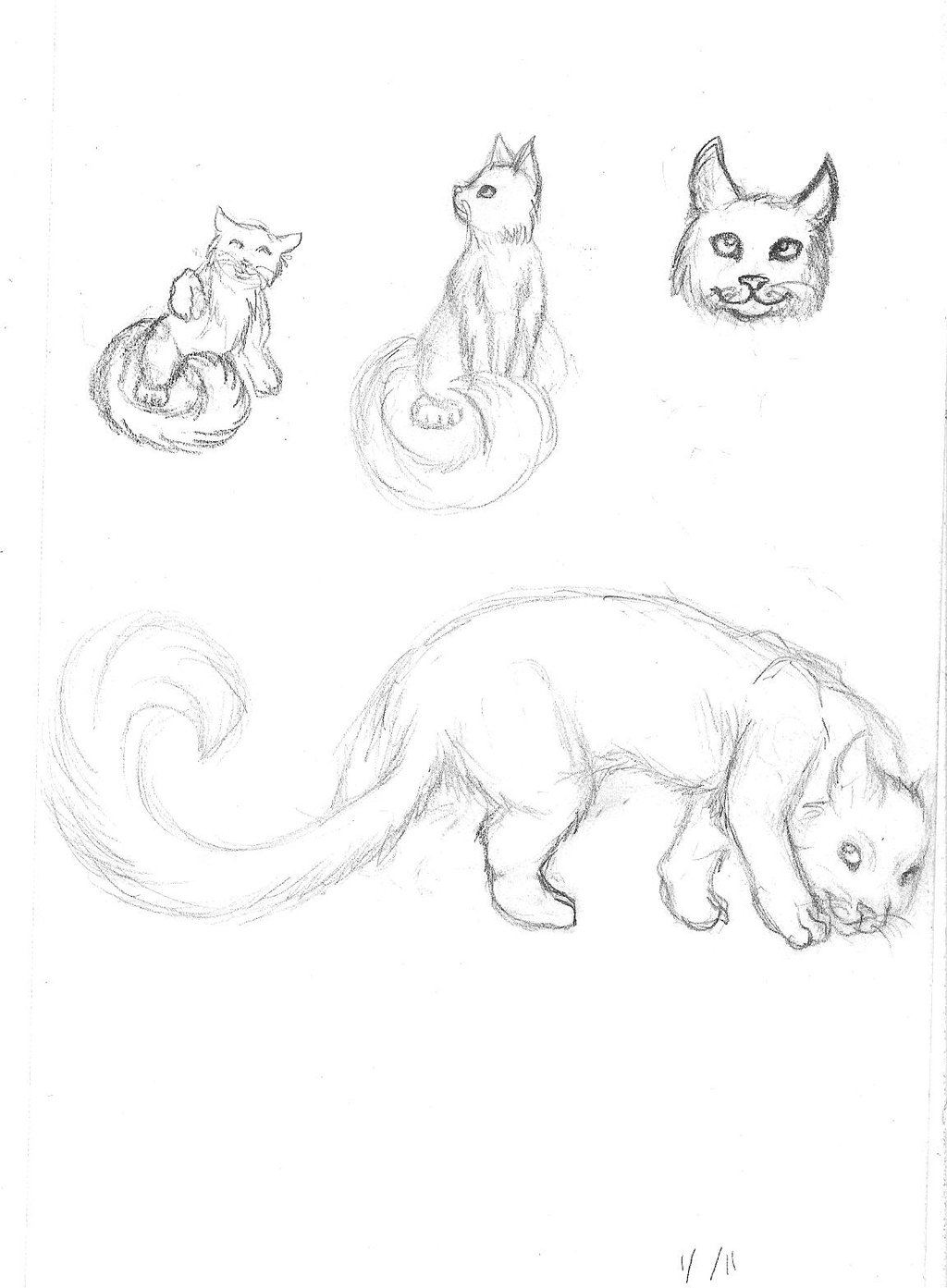 1024x1393 Fluffy Tail Kitty By Dani Claw
