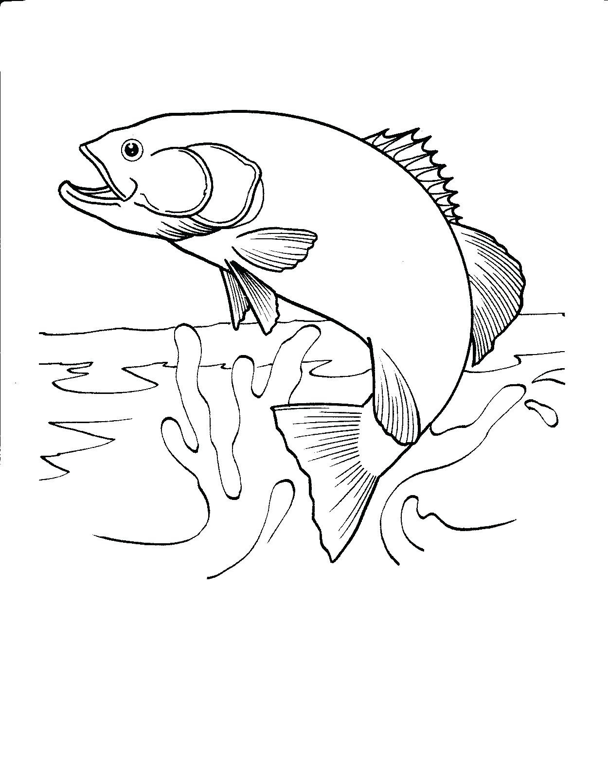 1250x1610 Fly Fishing Coloring Pages Free Draw To Color