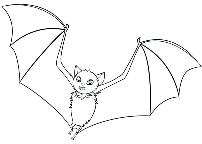 800x571 Bat Coloring Bats Coloring Halloween Bat Coloring Pictures