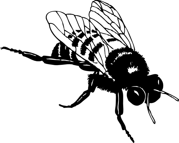 600x481 Bumble Bee Clip Art Free Vector In Open Office Drawing Svg ( Svg