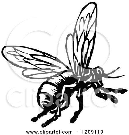 450x470 Clipart Of A Vintage Black And White Flying Bee