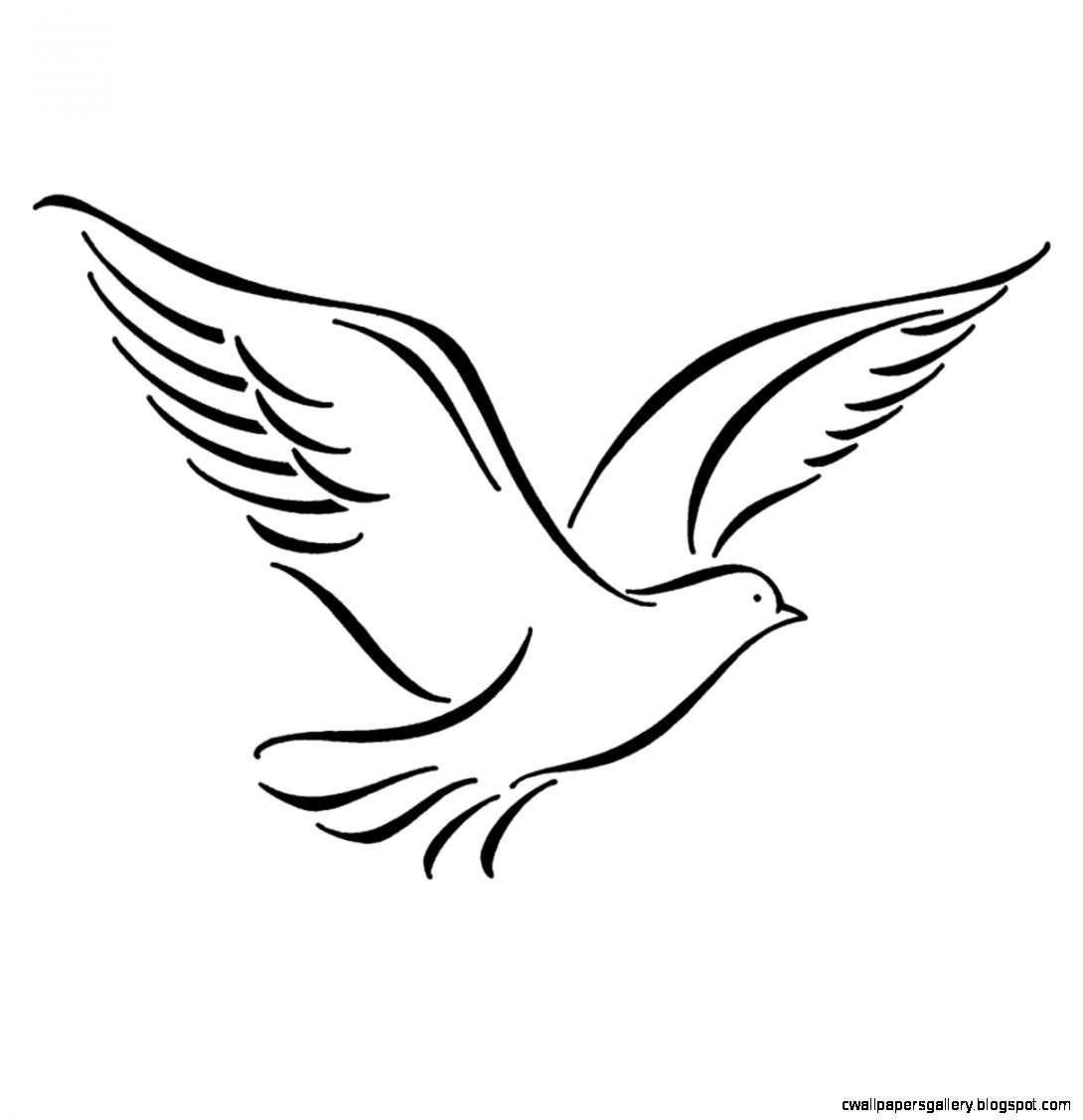 flying bird drawing at getdrawings | free for personal use