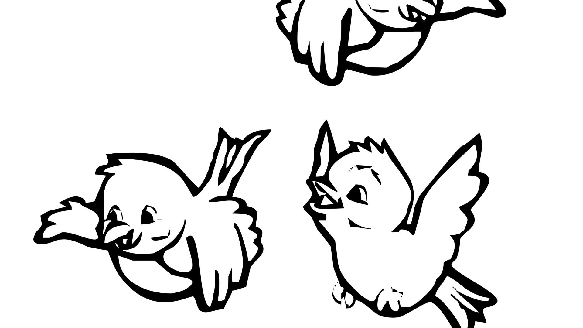 1920x1080 Drawn Bird Coloring Page Pencil Black And White Printable Of Birds