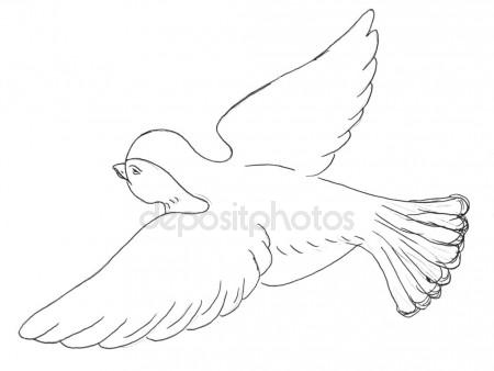 450x338 Sketch Silhouette Flying Bird Crow On The Side Stock Photo