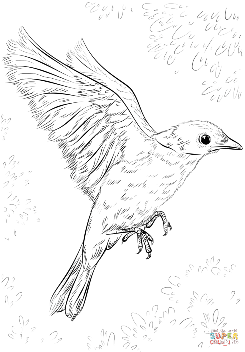 824x1186 Blue Bird Flying Coloring Page Free Printable Coloring Pages