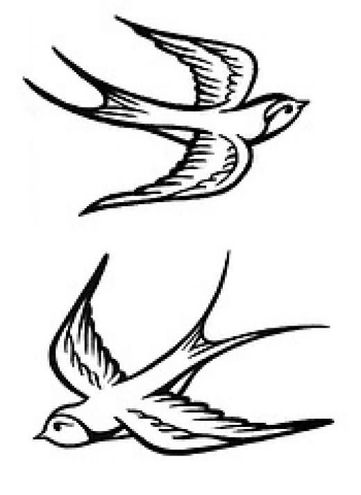 520x713 Unique Birds Tattoos Designs