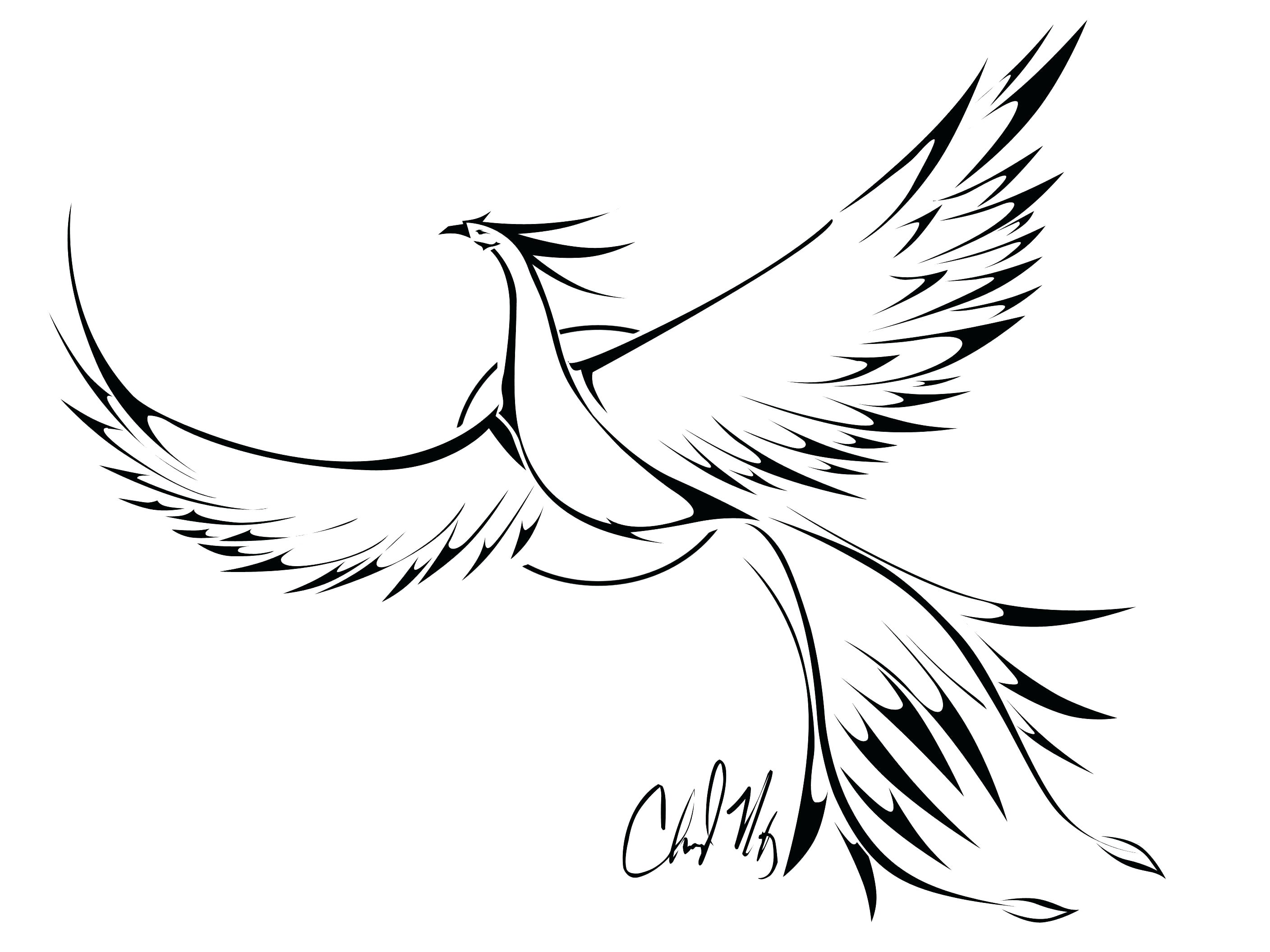 2816x2112 Printable Flying Bird Outline Printable