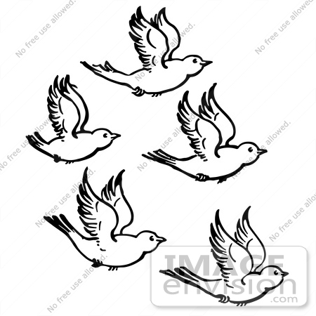450x450 Clipart Of Five Flying Birds In Black And White