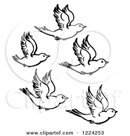 450x470 Clipart Of Black And White Five Flying Birds