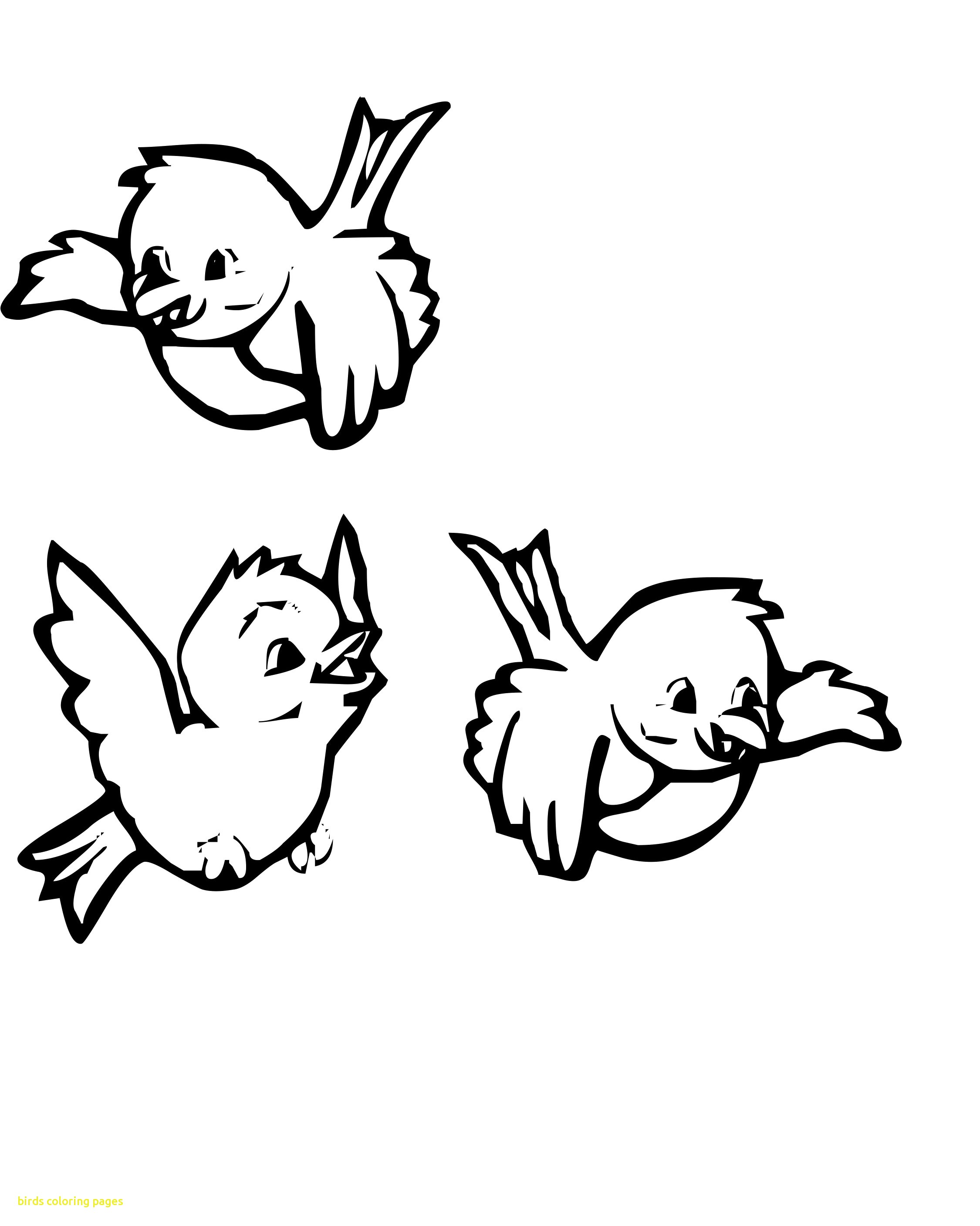 2250x2814 Coloring Pages Of Birds Free For Kids Printable Page Animals