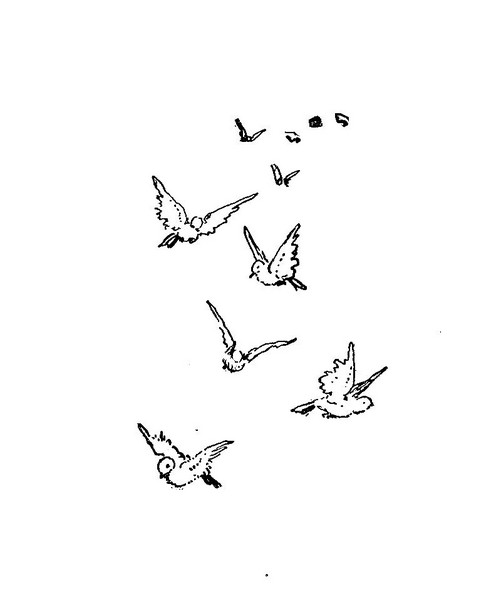 501x599 Flying Bird Drawing Simple Cute, Simple Bird Design Images
