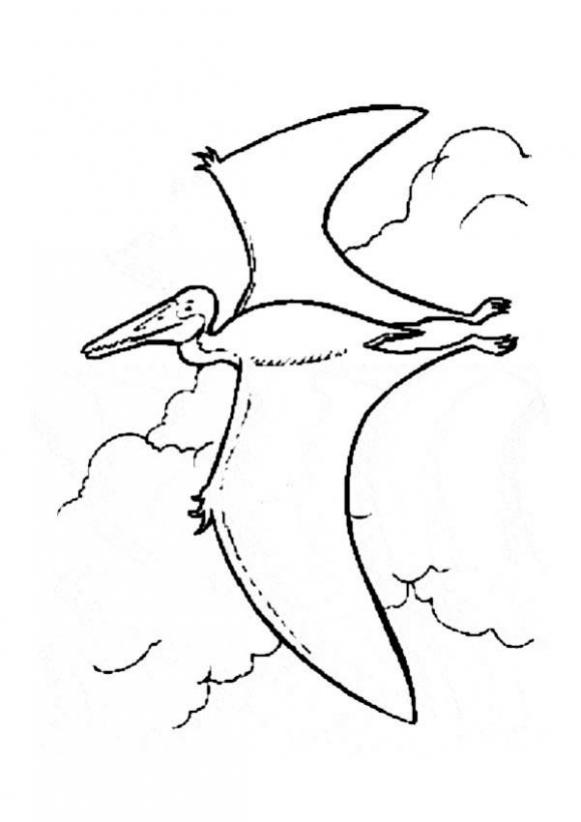 581x822 Flying Prehistoric Bird Coloring Pages