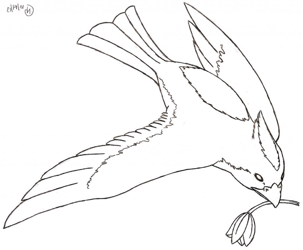 1024x845 How To Draw A Flying Bird Step By Step