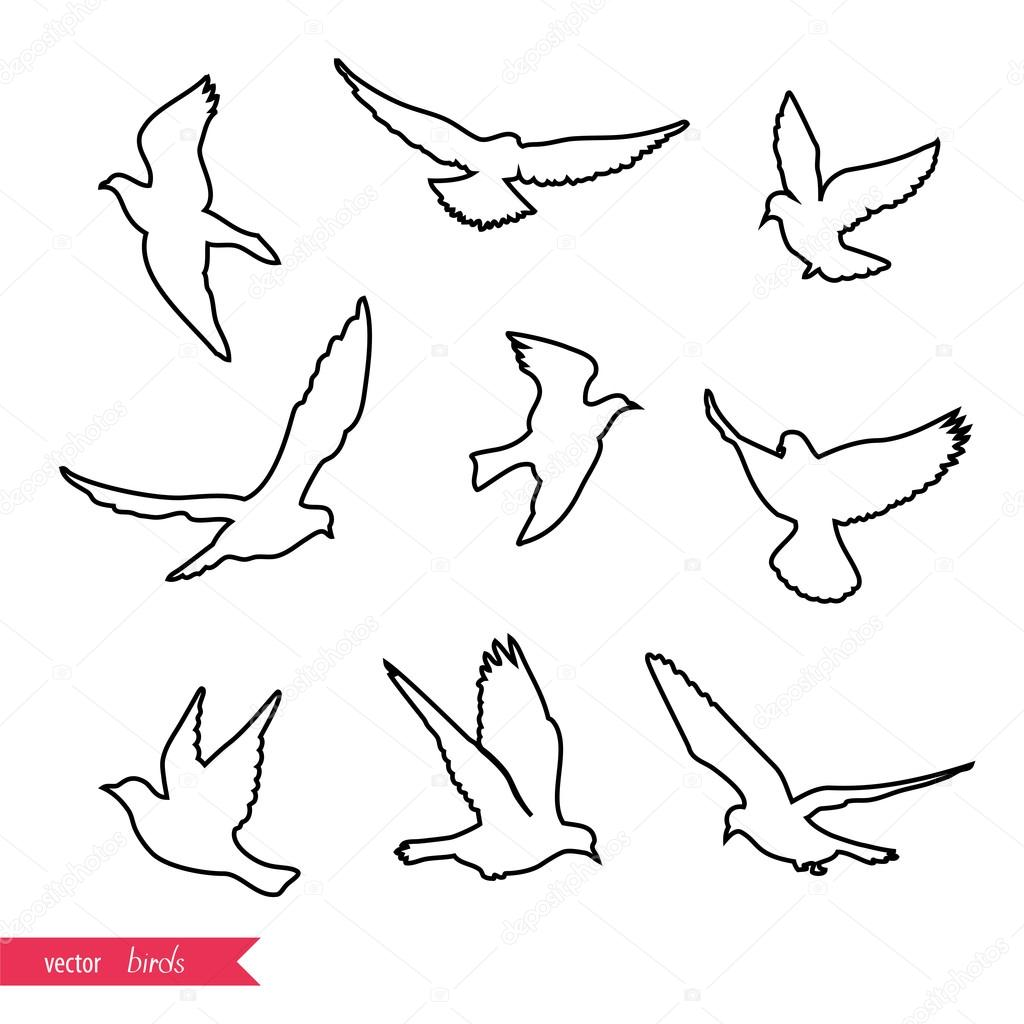 1024x1024 Flying Birds Silhouettes Stock Vector Mrs Opossum