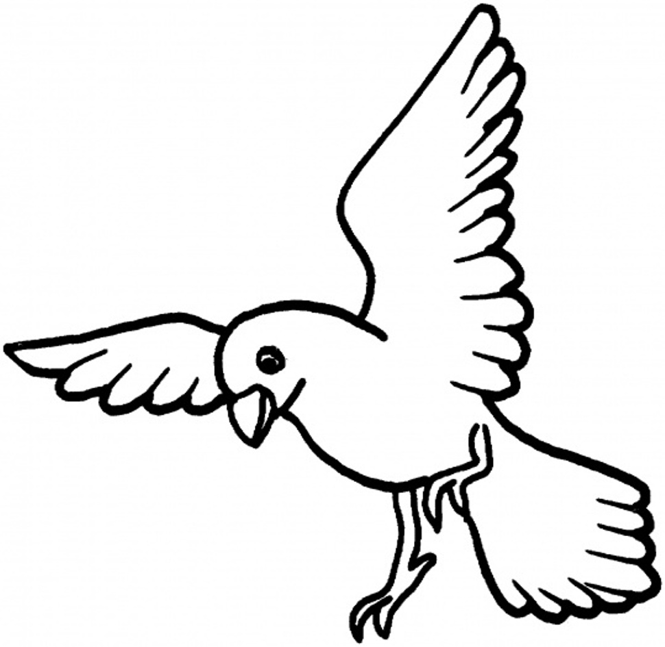 970x945 Birds Coloring Pages
