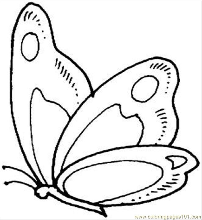 650x706 butterfly 9 coloring page coloring page