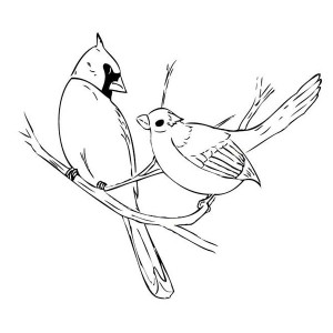 flying cardinal drawing at getdrawings com free for personal use