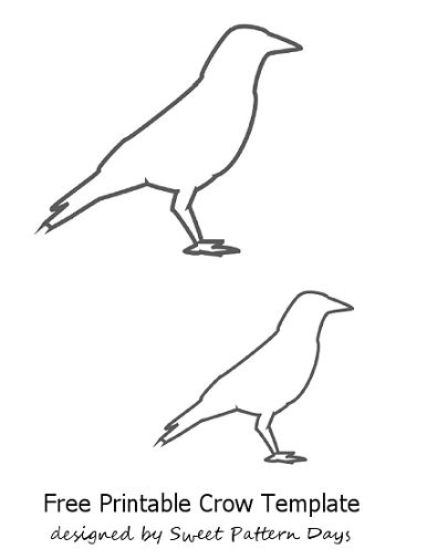 Flying Crow Drawing