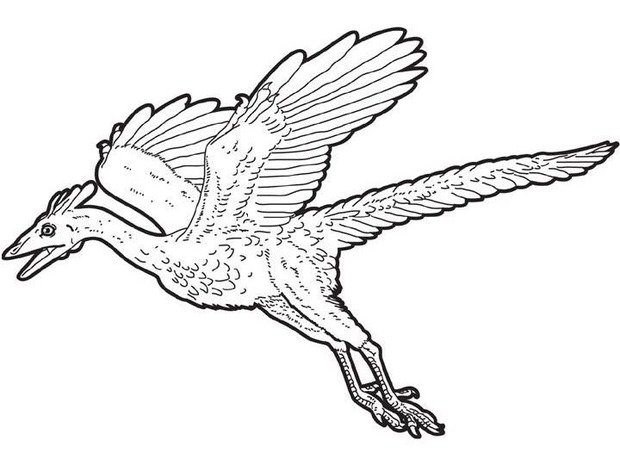 Flying Dinosaurs Drawing