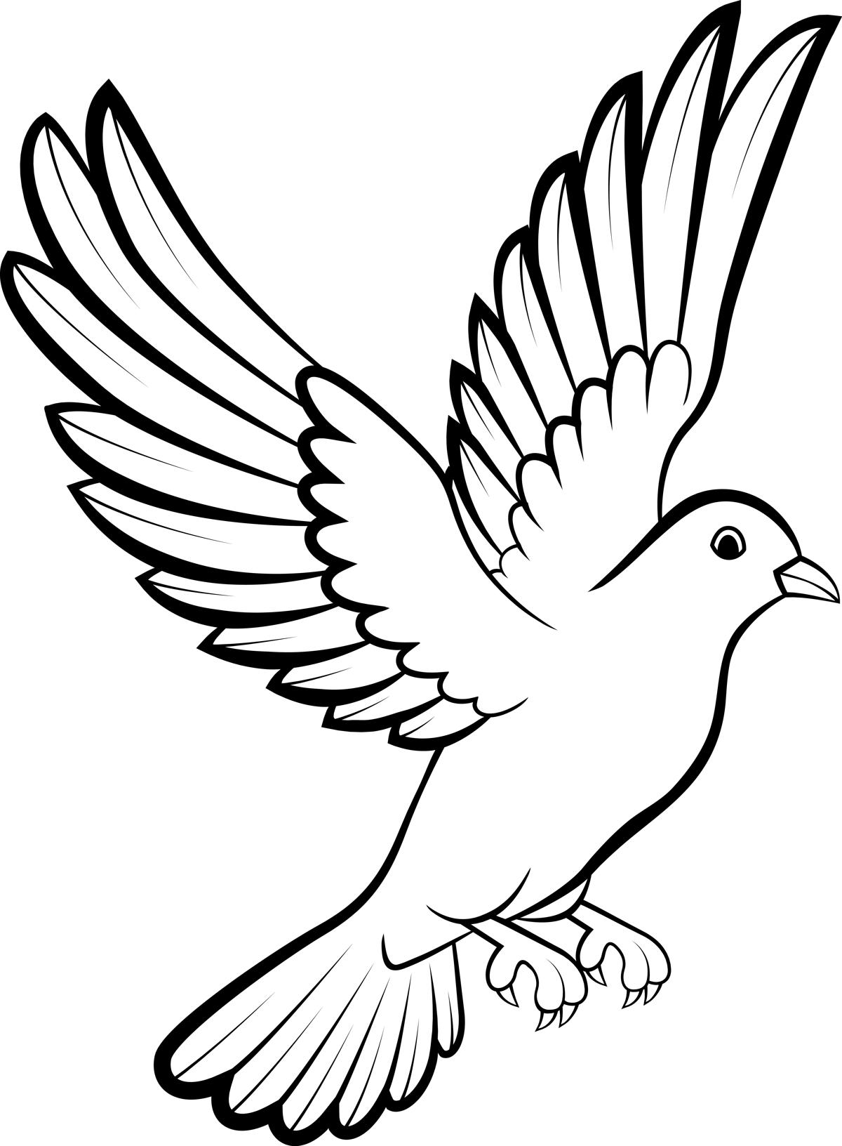 This is a photo of Satisfactory Realistic Dove Drawing