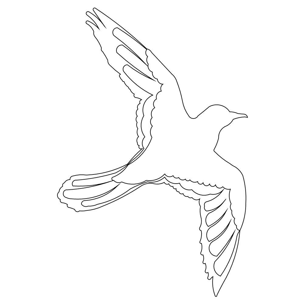 1000x1000 Bird Flying Drawing Drawing Of A Flying Bird Flying Bird Realistic