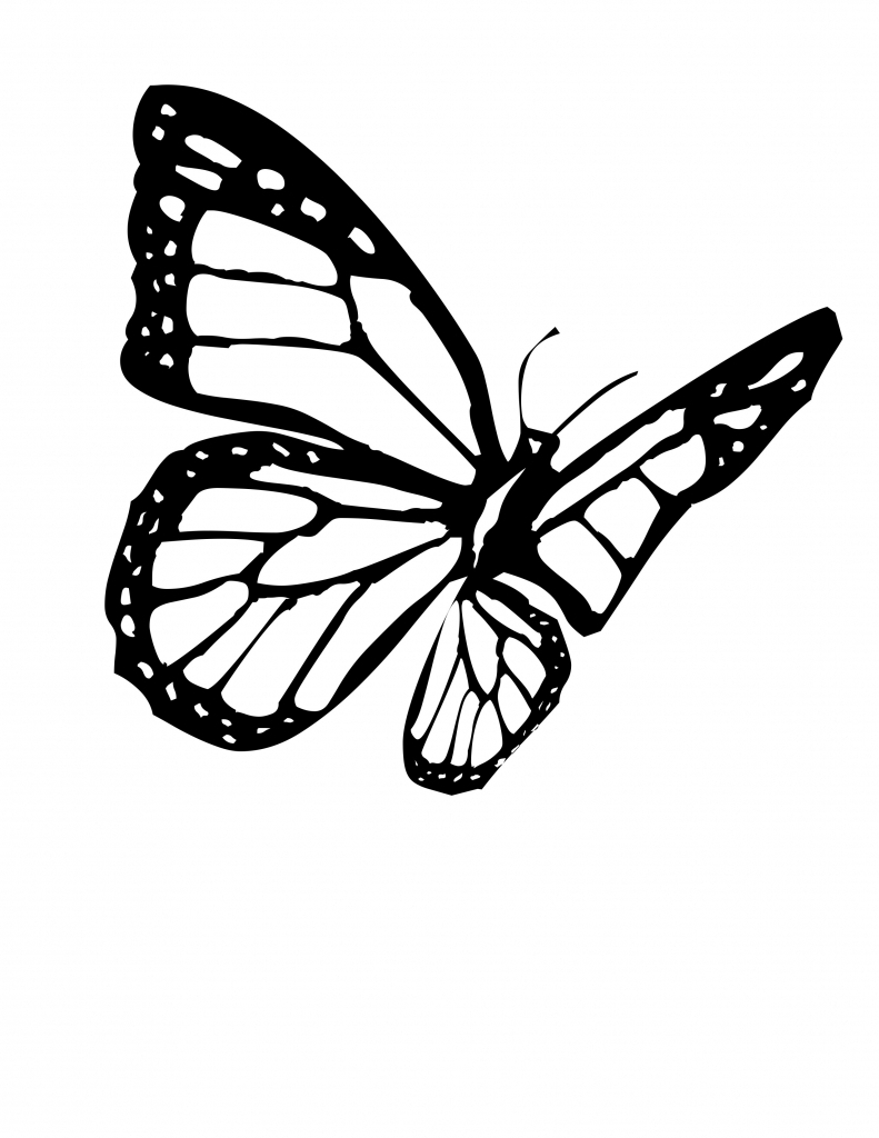 Line Drawing Butterfly : Flying drawing at getdrawings free for personal use