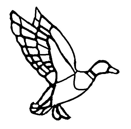 550x544 27 Best Duck Logo Images On Duck Logo, Ducks And Duck