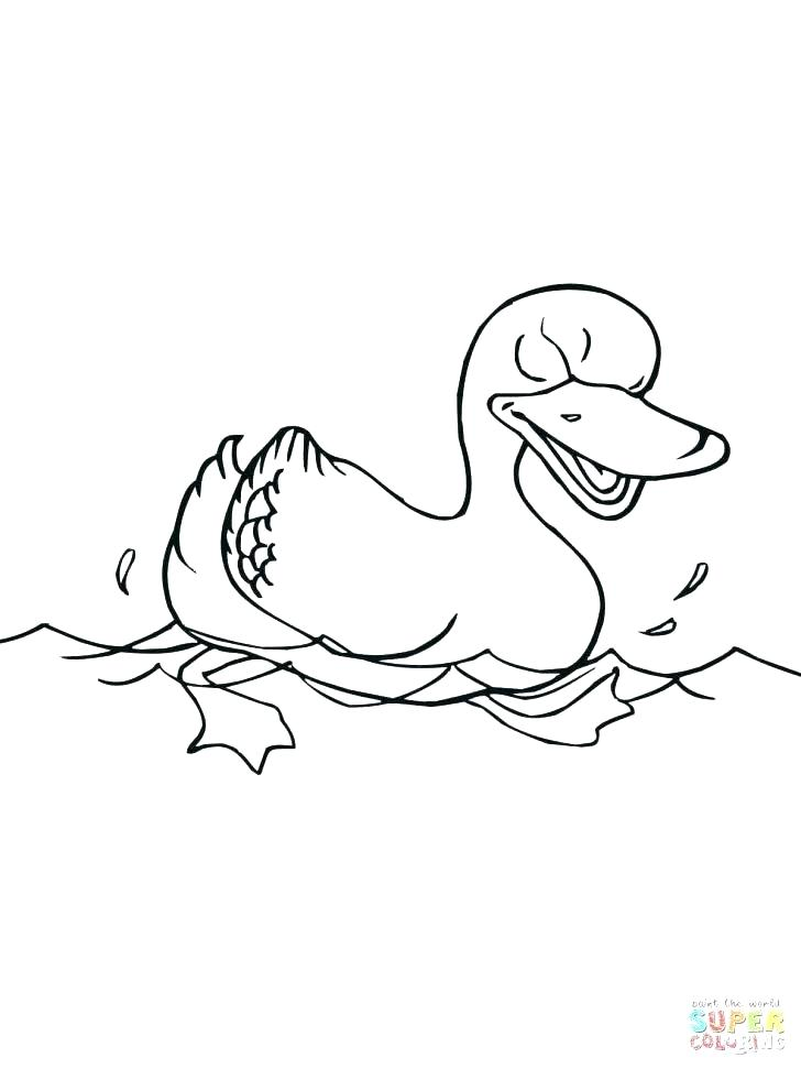 728x971 Ducks Coloring Pages Synthesis.site